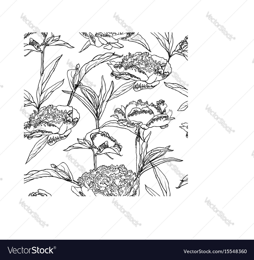 Seamless floral background with peonies coloring