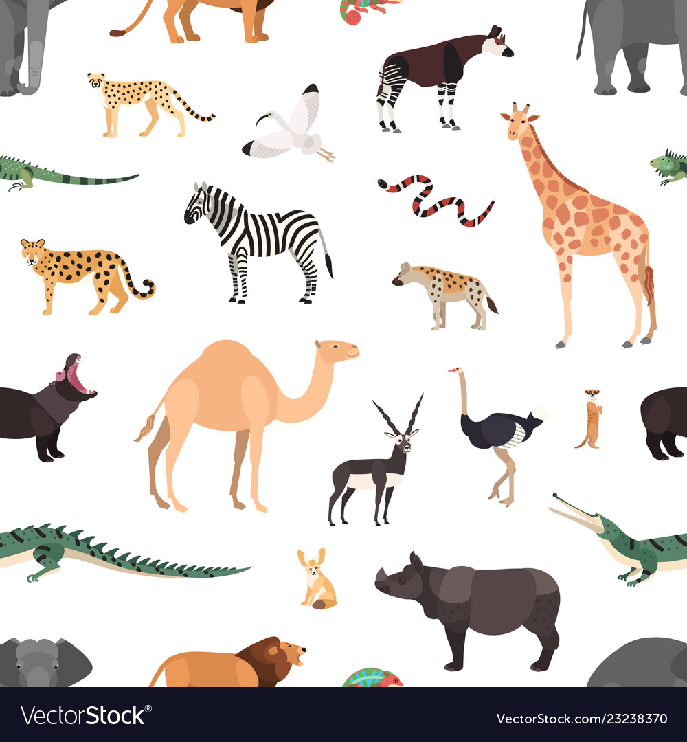 Seamless pattern with exotic animals on white