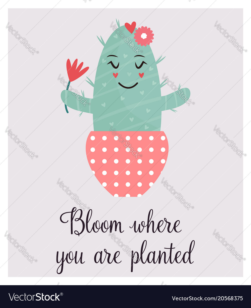 bright card cute smiling cactus and quote vector image