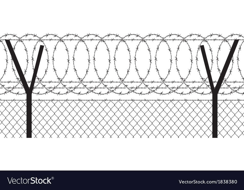 Barbed wire vector image