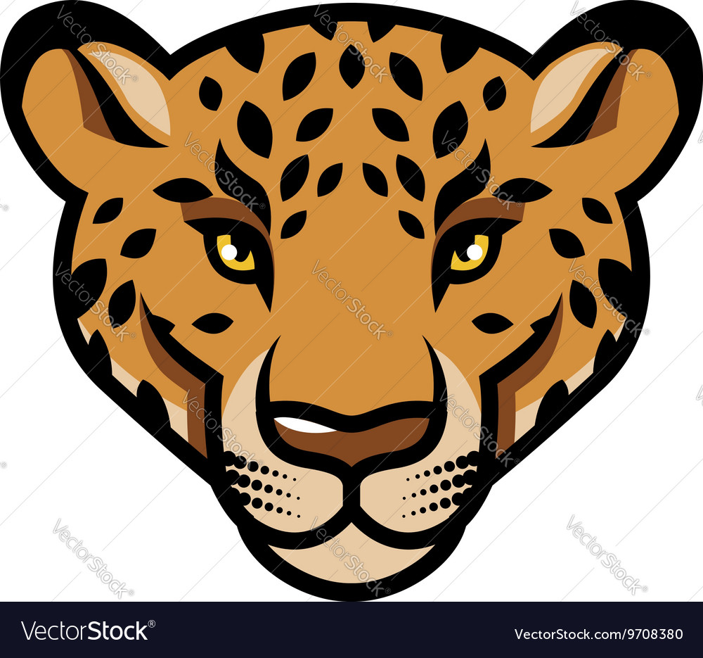 Leopard calm vector image