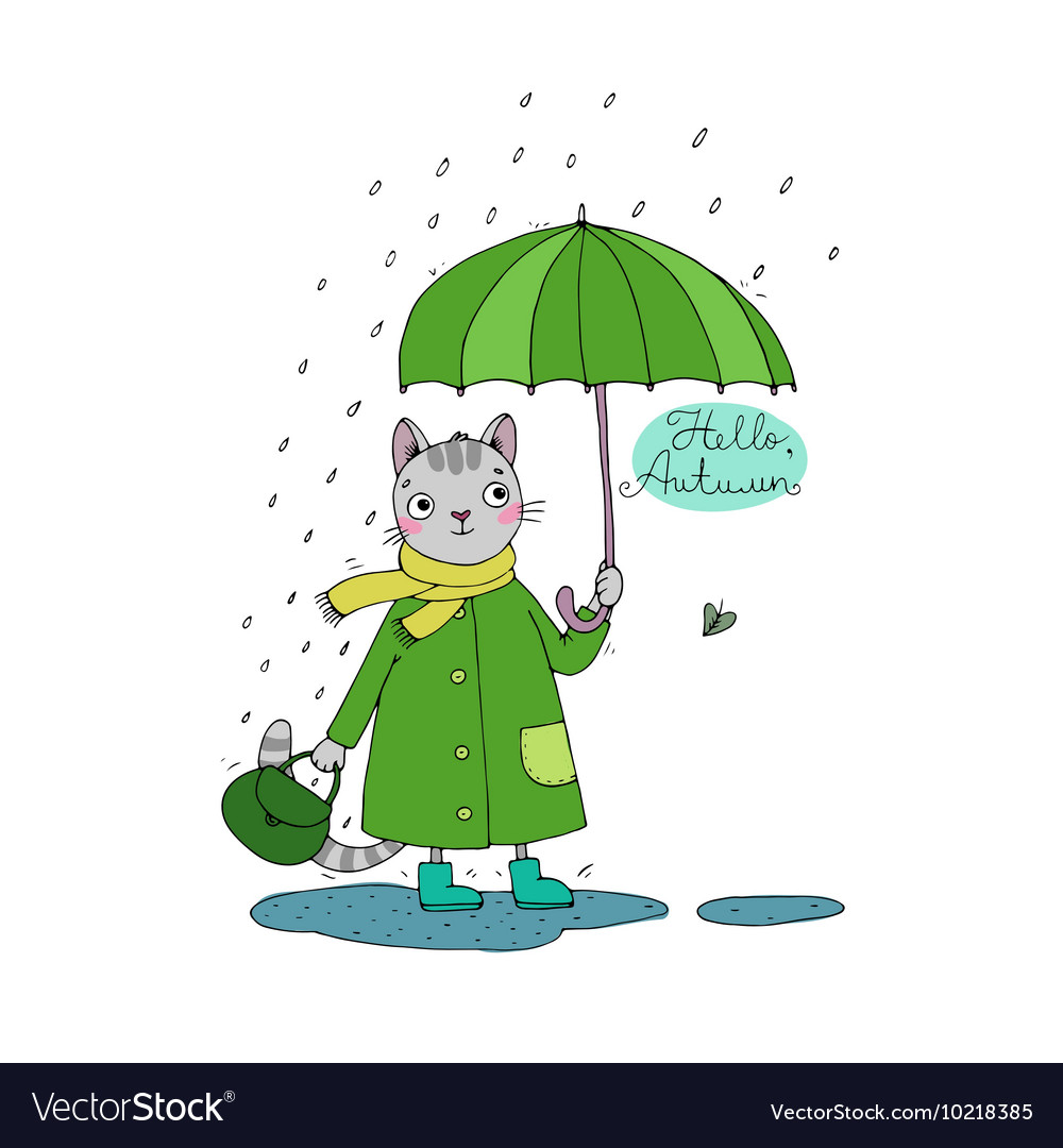 Cute cartoon cat umbrella rain and puddles