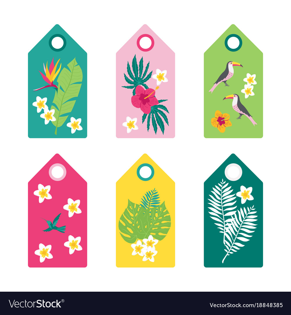 Tropical set of summer tags