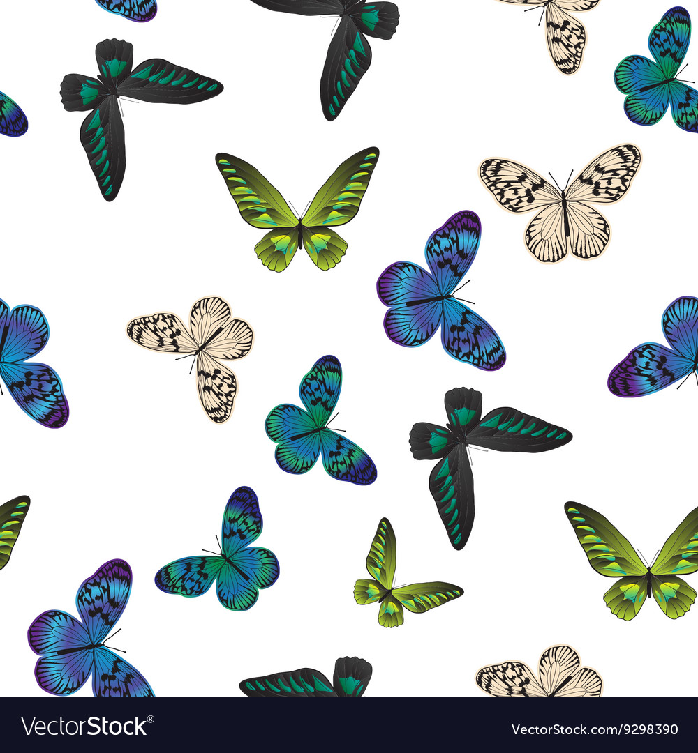 Seamless pattern with tropical butterflies