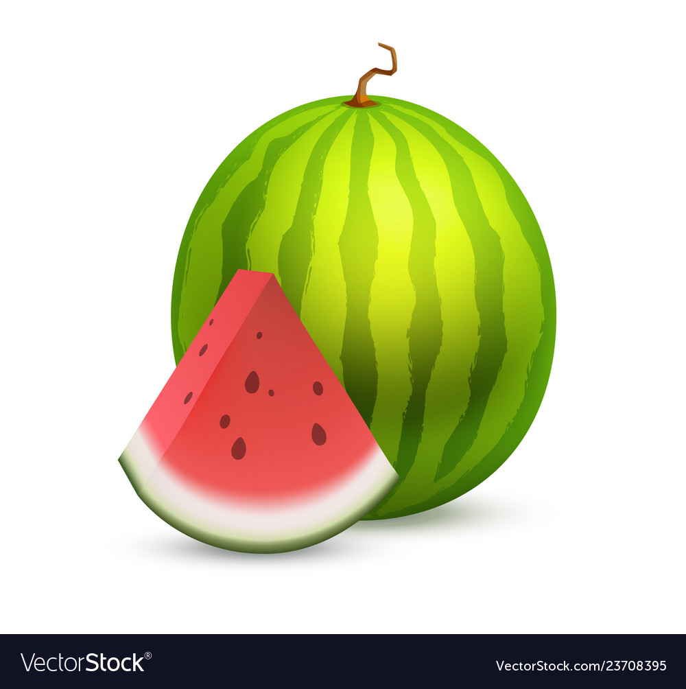 Whole beautiful watermelon with a slice section of