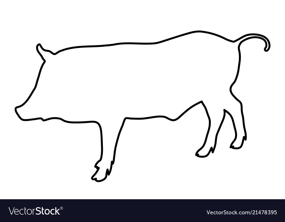 Wild boar outline of the black lines
