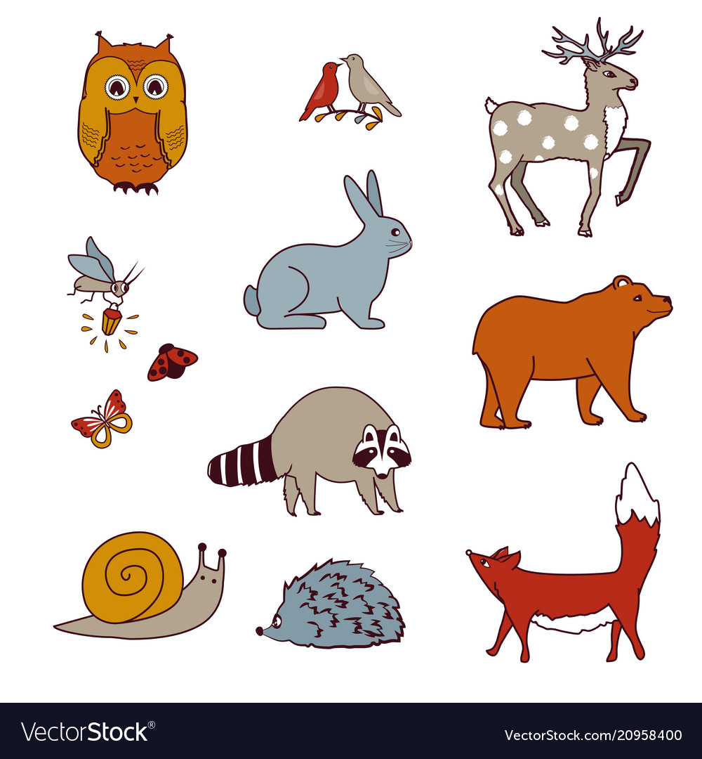 Forest animals set with bear owl birds deer hare