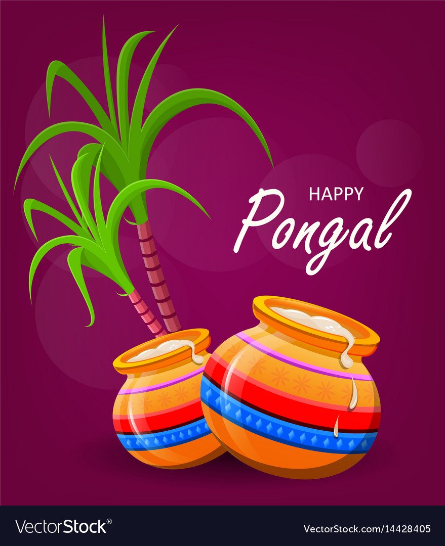 Happy pongal greeting card on violet background vector image m4hsunfo