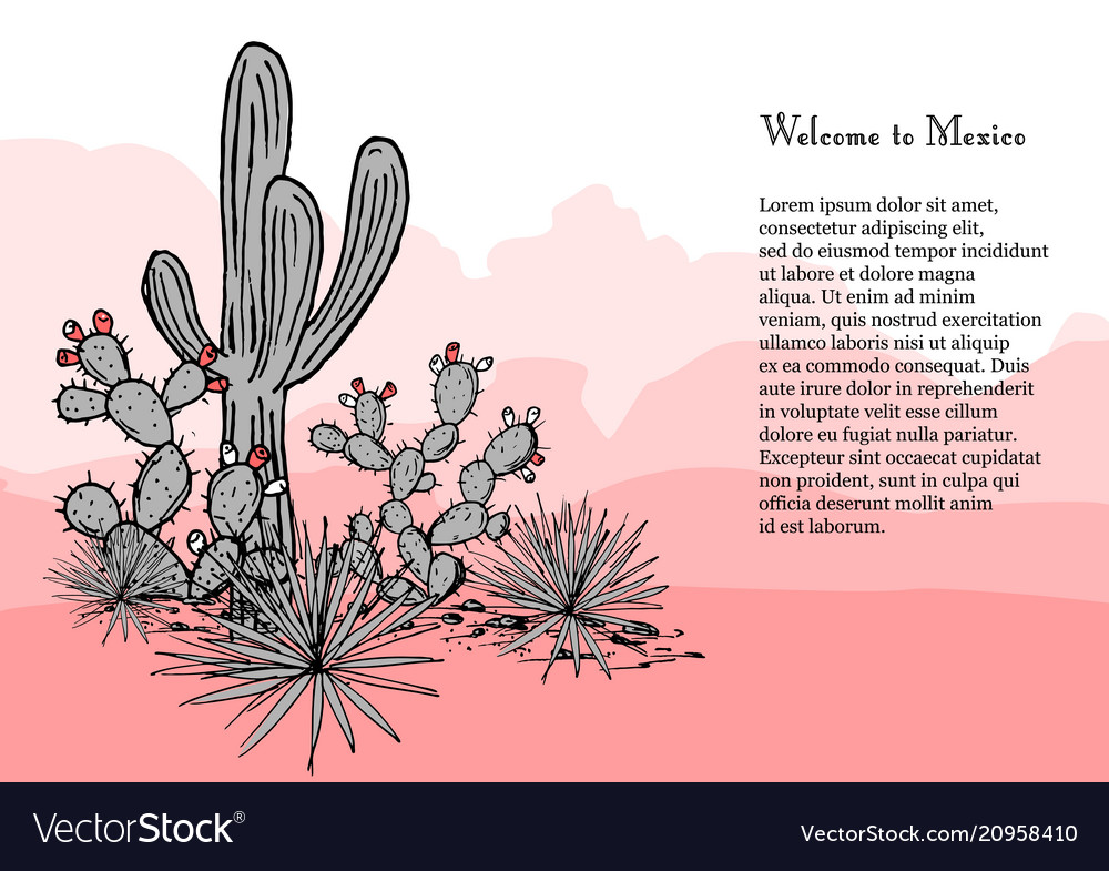 Cacti group prickly pear cactus blue agaves and