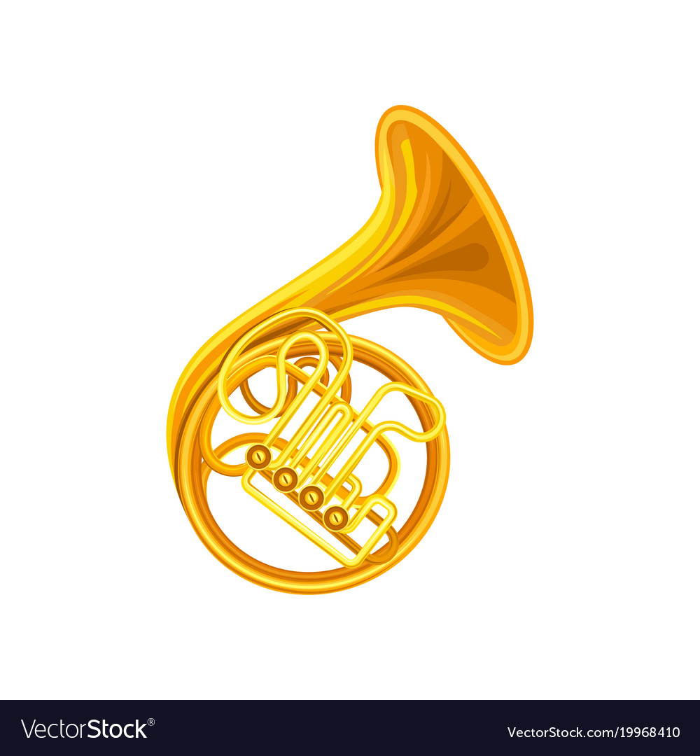 Golden french horn brass musical instrument with