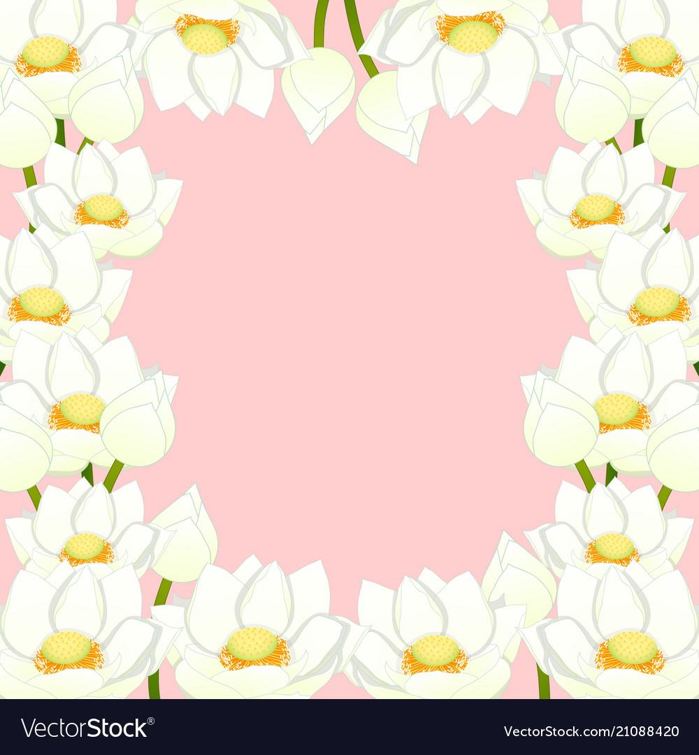 White Indian Lotus Border Royalty Free Vector Image