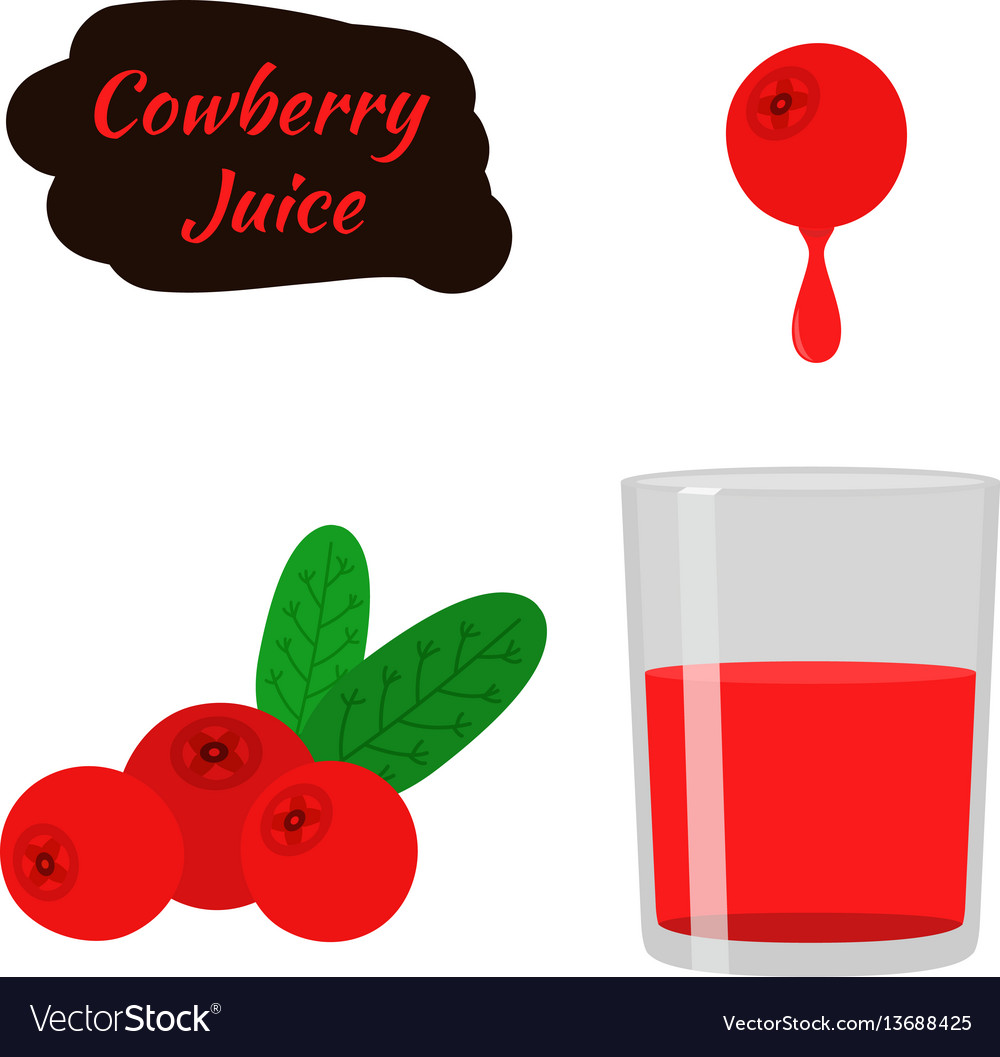 Berry juice red cowberry lingonberry cranberry in