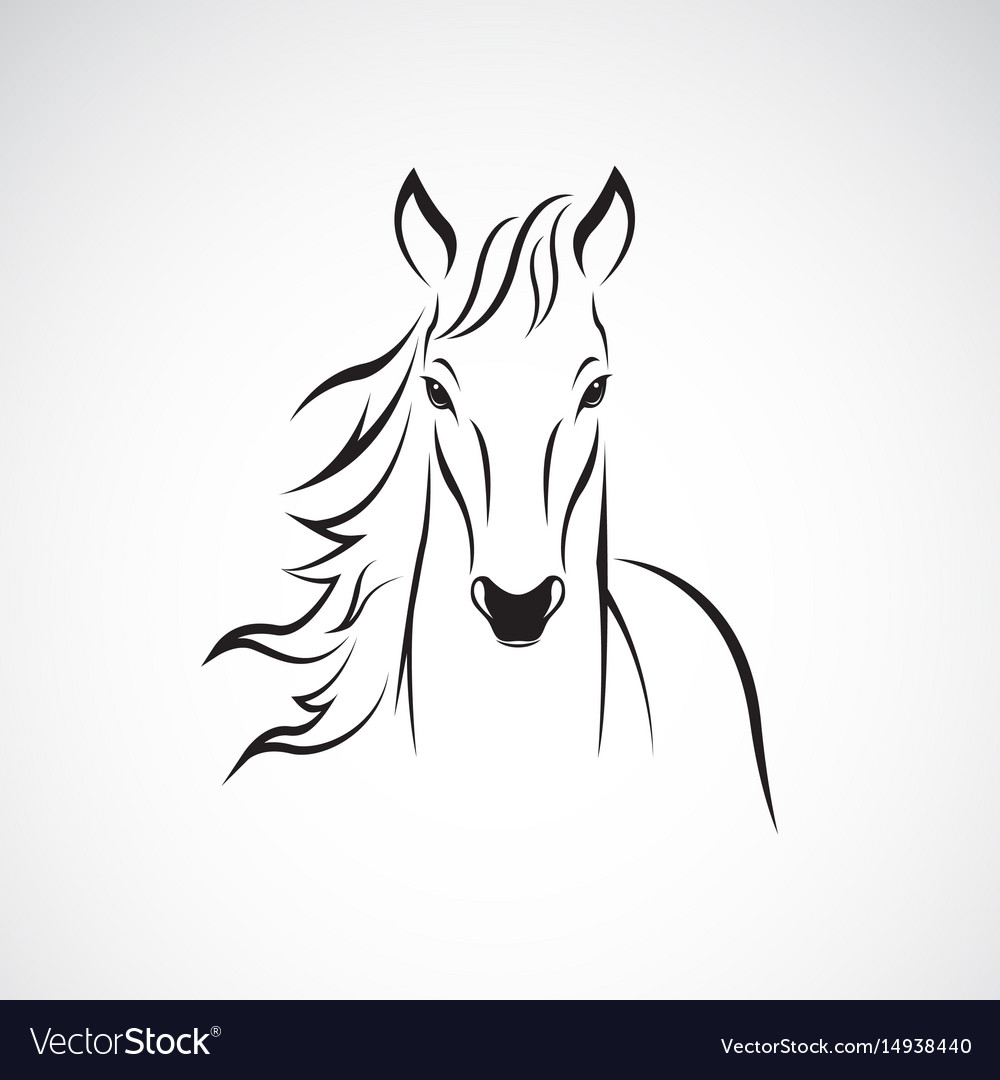 A horse on white background wild animals vector image