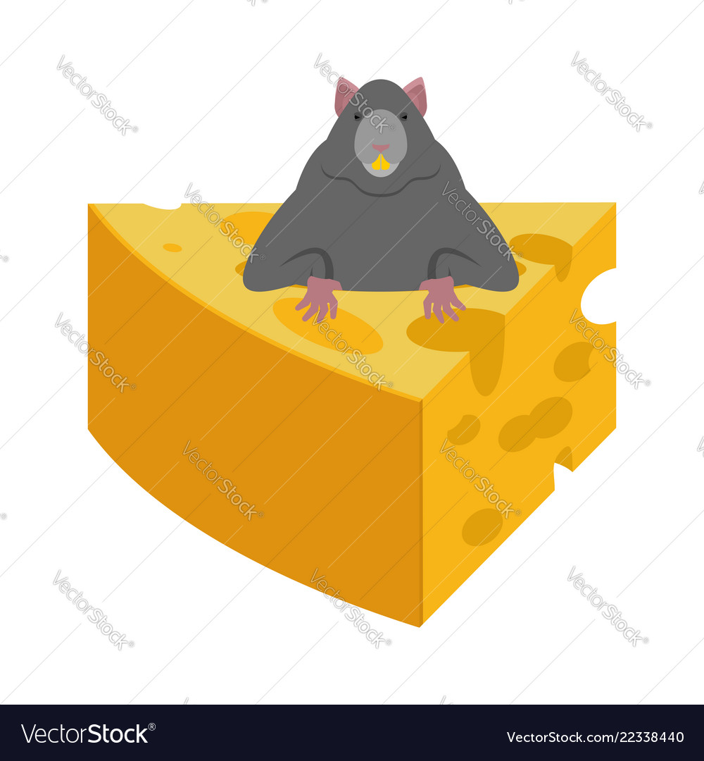 Mouse and cheese rodent