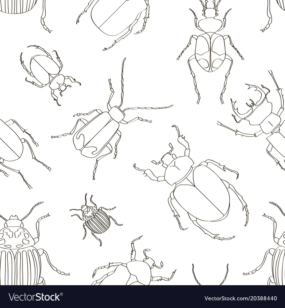 Set of beetle pattern