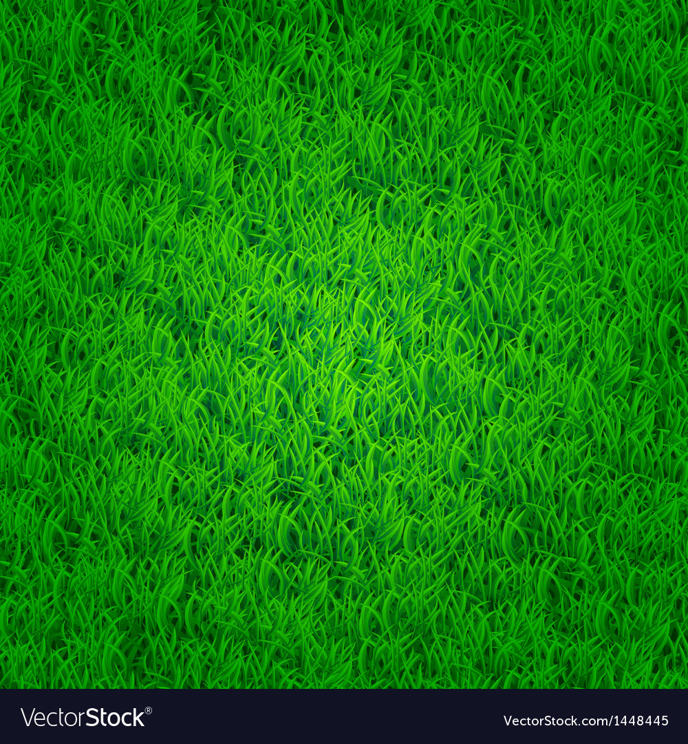 green grass background royalty free vector image vectorstock