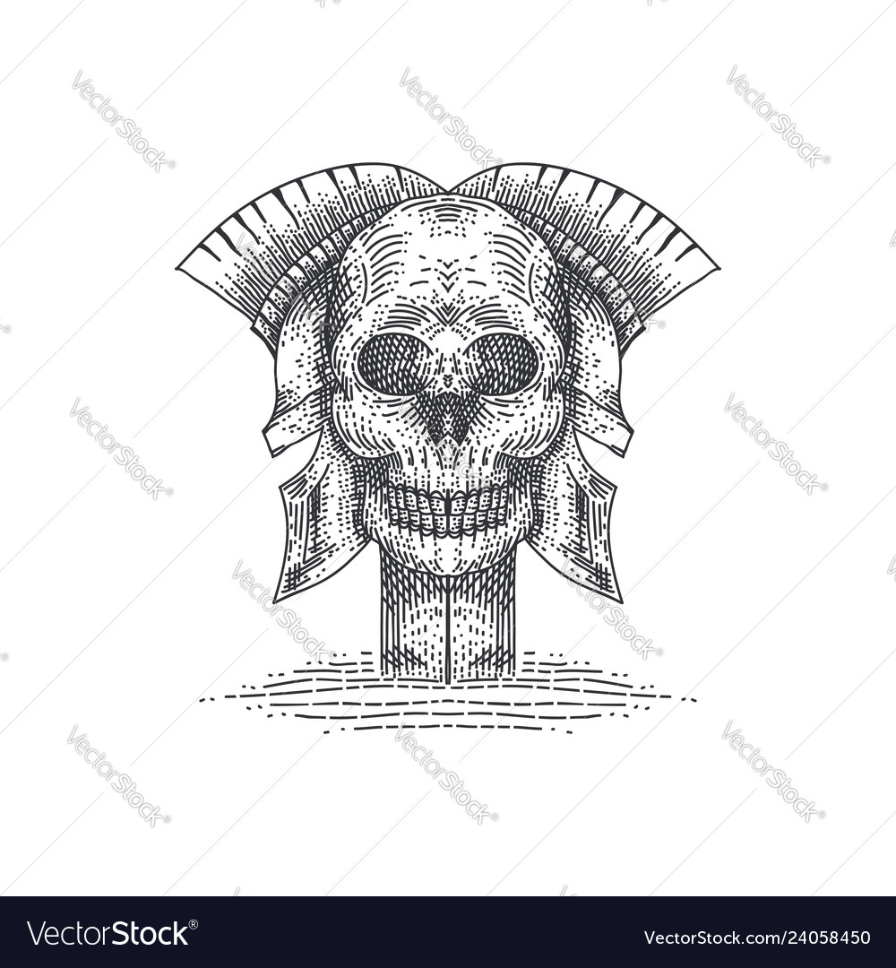 Skull spartan