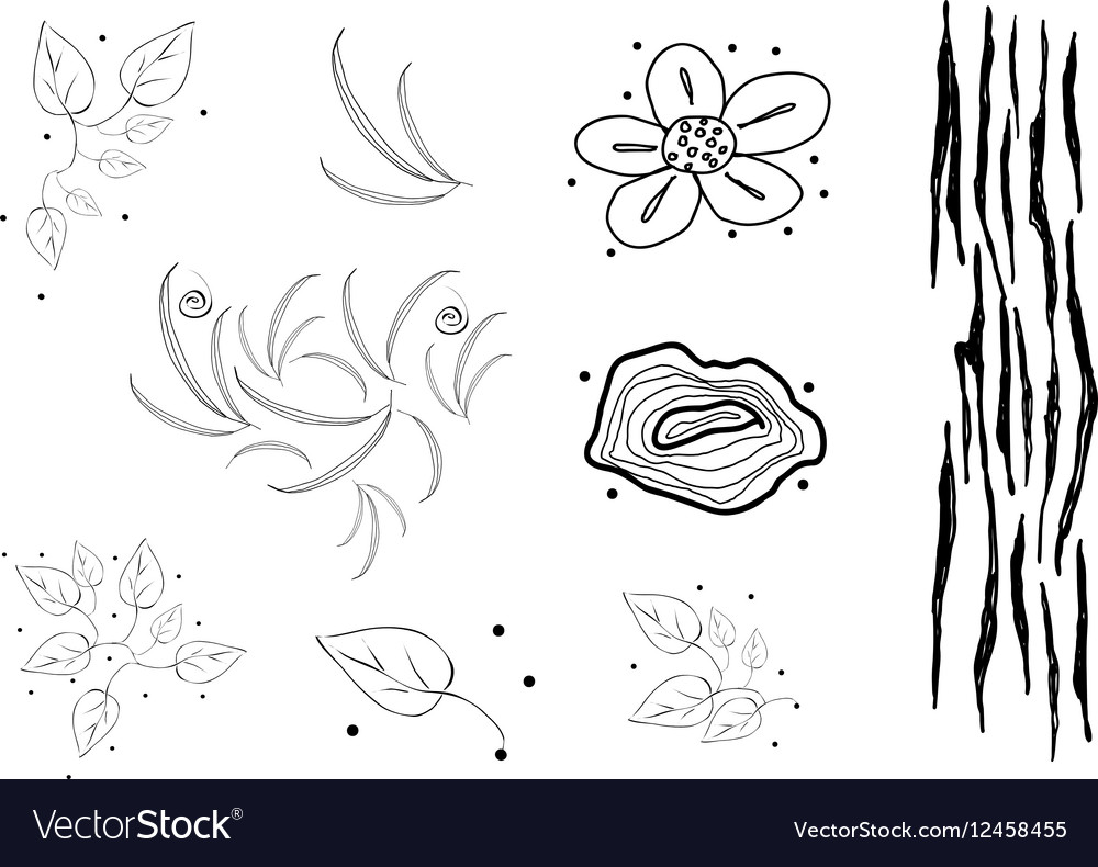 Collection of Black and White Doodle Flaral vector image