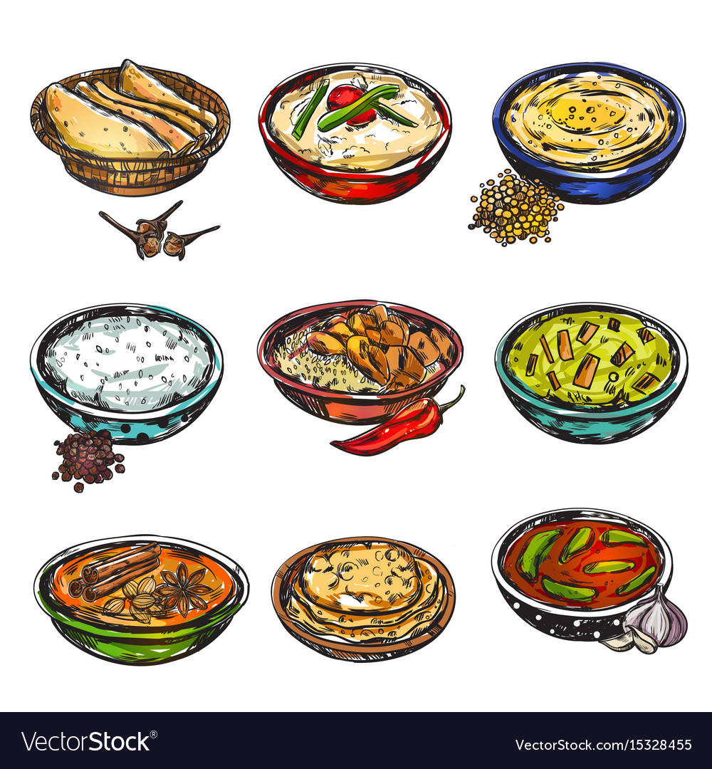 Indian food icon set vector image