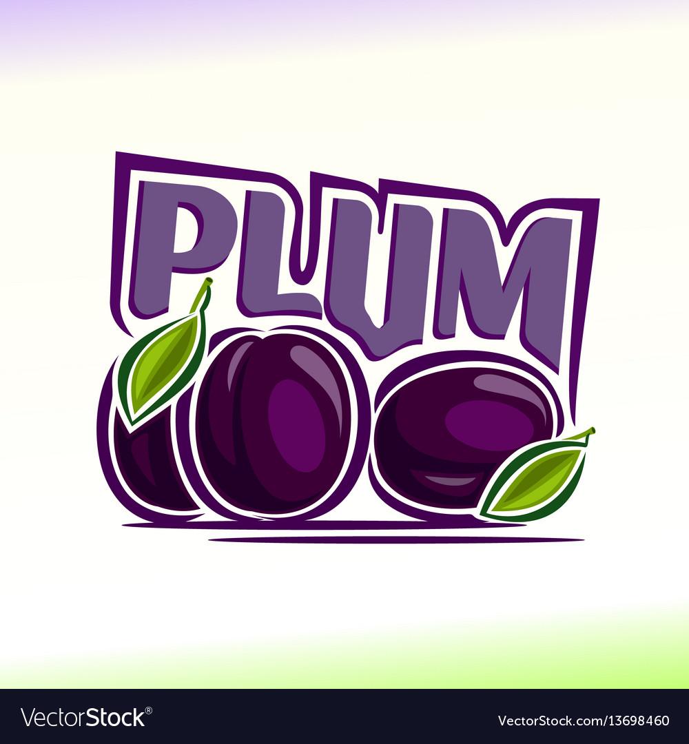 Plum still life vector image