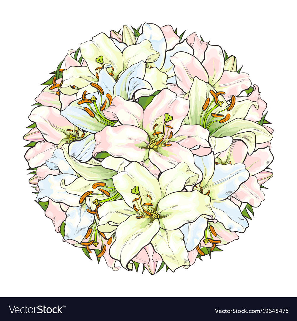 Round decoration element of white lily flowers vector image izmirmasajfo