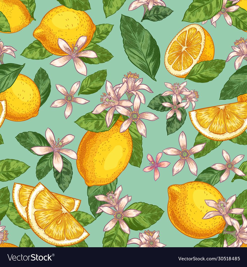 Lemon blossom seamless pattern hand drawn yellow