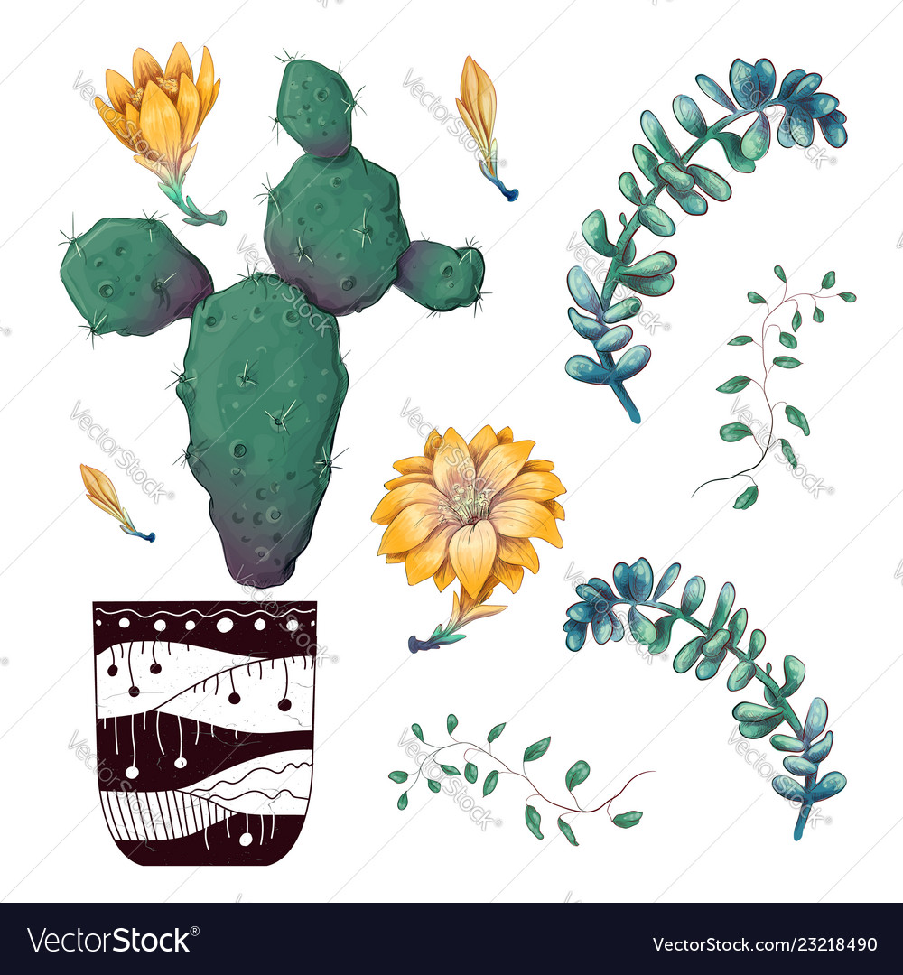 Potted cacti and succulents plants badge