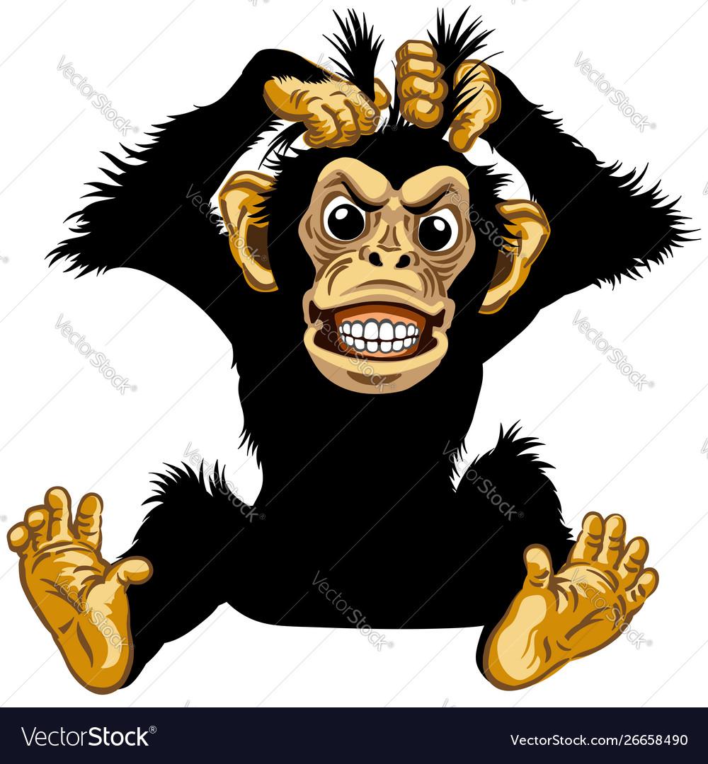 Sitting angry cartoon chimp