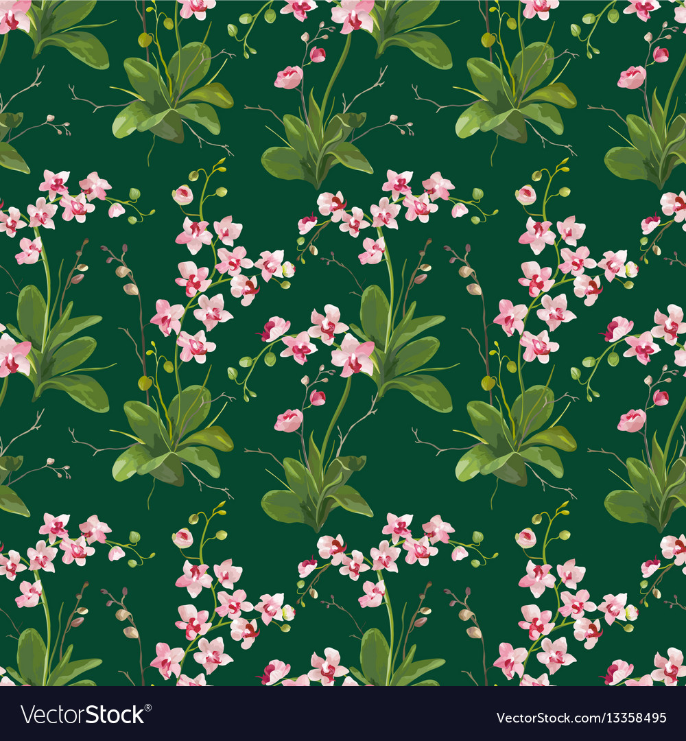 Orchid Tropical Leaves And Flowers Background Vector Image Find over 100+ of the best free tropical leaves images. vectorstock