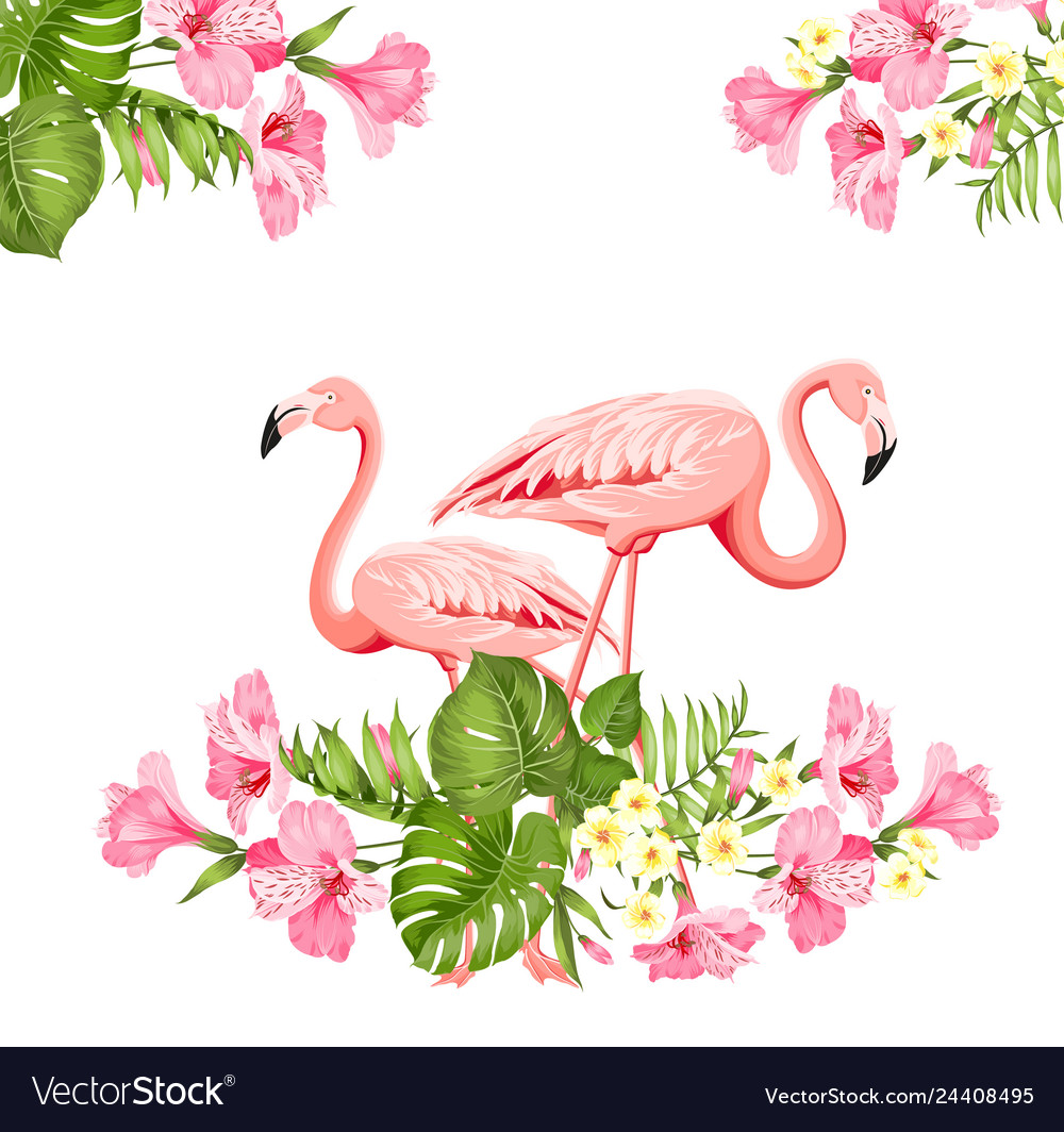 Tropical birds and flowers fashion