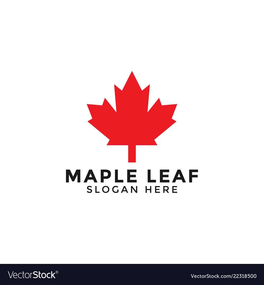 Red maple leaf logo icon design template