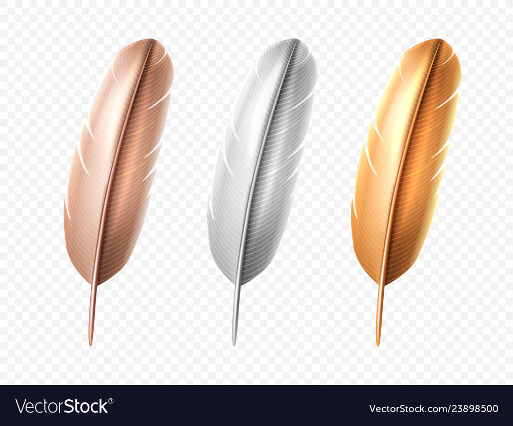 Set of isolated bird realistic feather quill