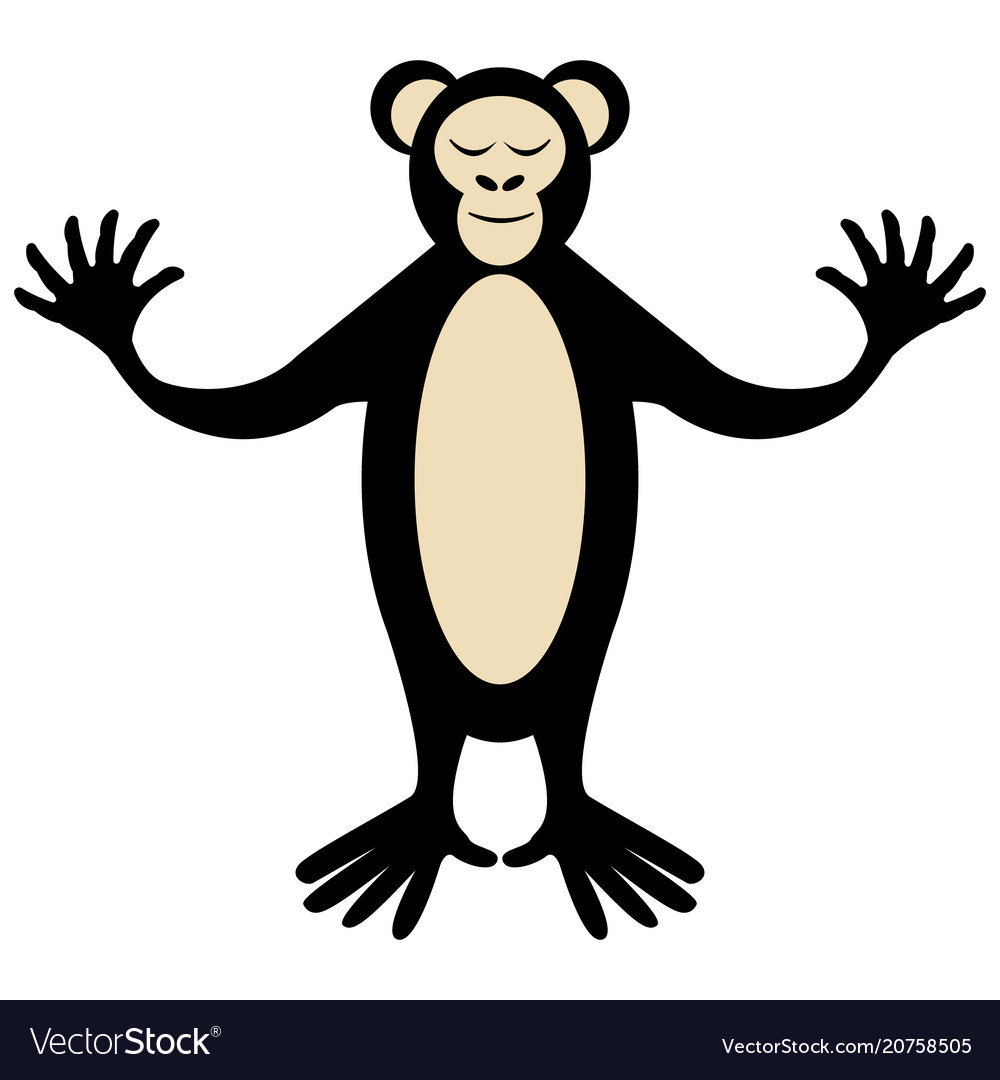Cartoon cute monkey posing