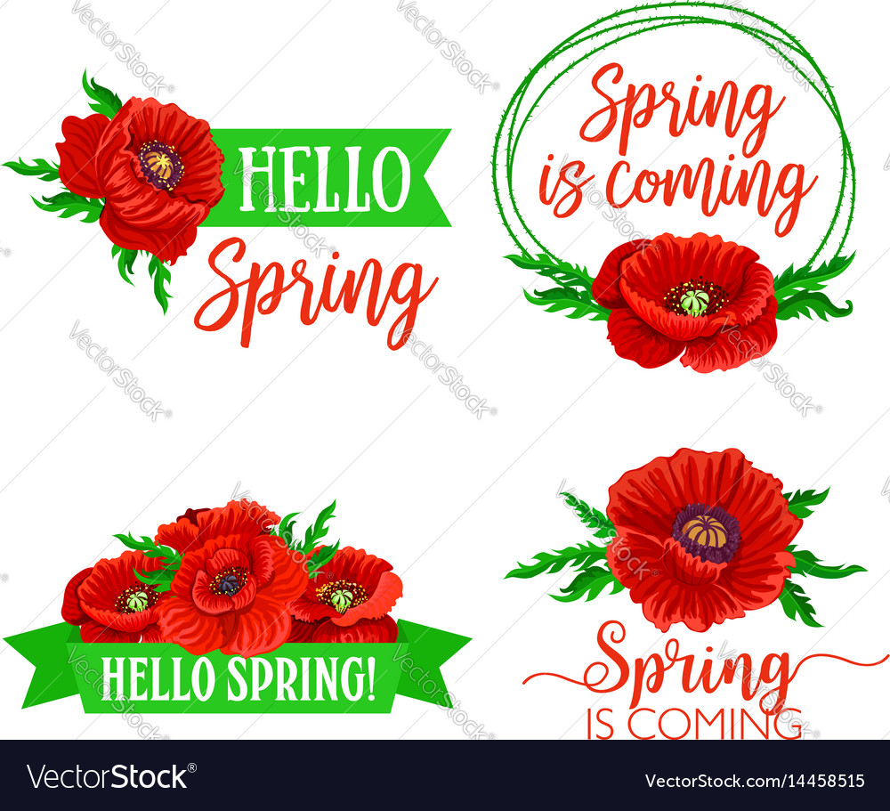 Spring time flowers and quotes bouquets royalty free vector spring time flowers and quotes bouquets vector image mightylinksfo