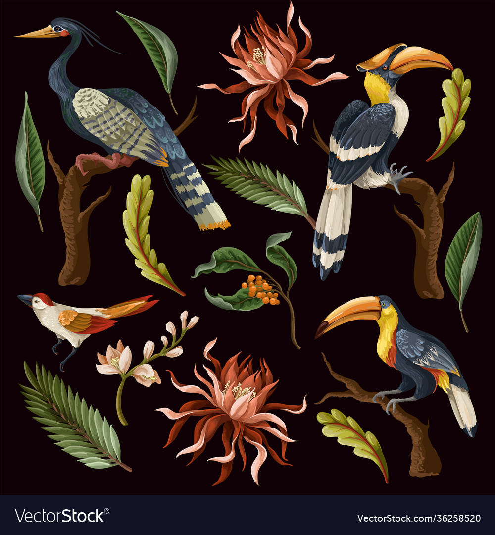 Birds and tropical leaves and flowers isolated