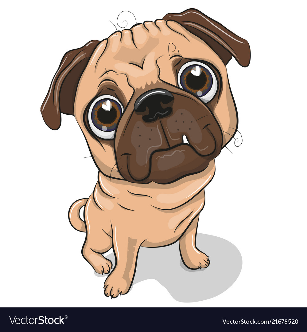 Cartoon pug dog isolated on a white background Vector Image