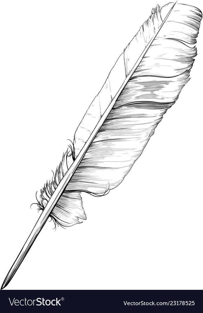 Classic goose feather