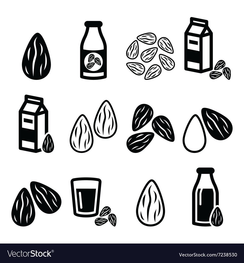 Almonds almond milk icons set