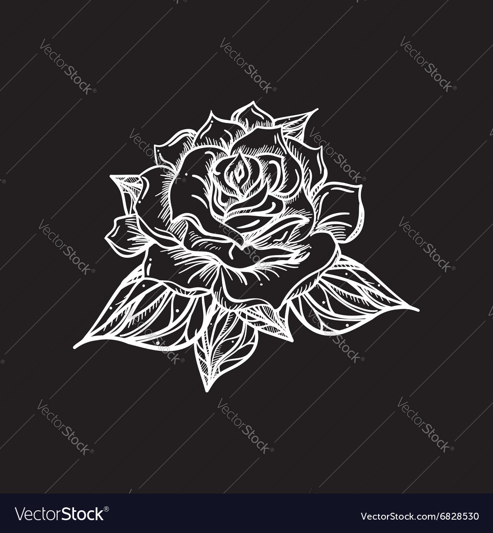 Hand Drawn Wedding Rose