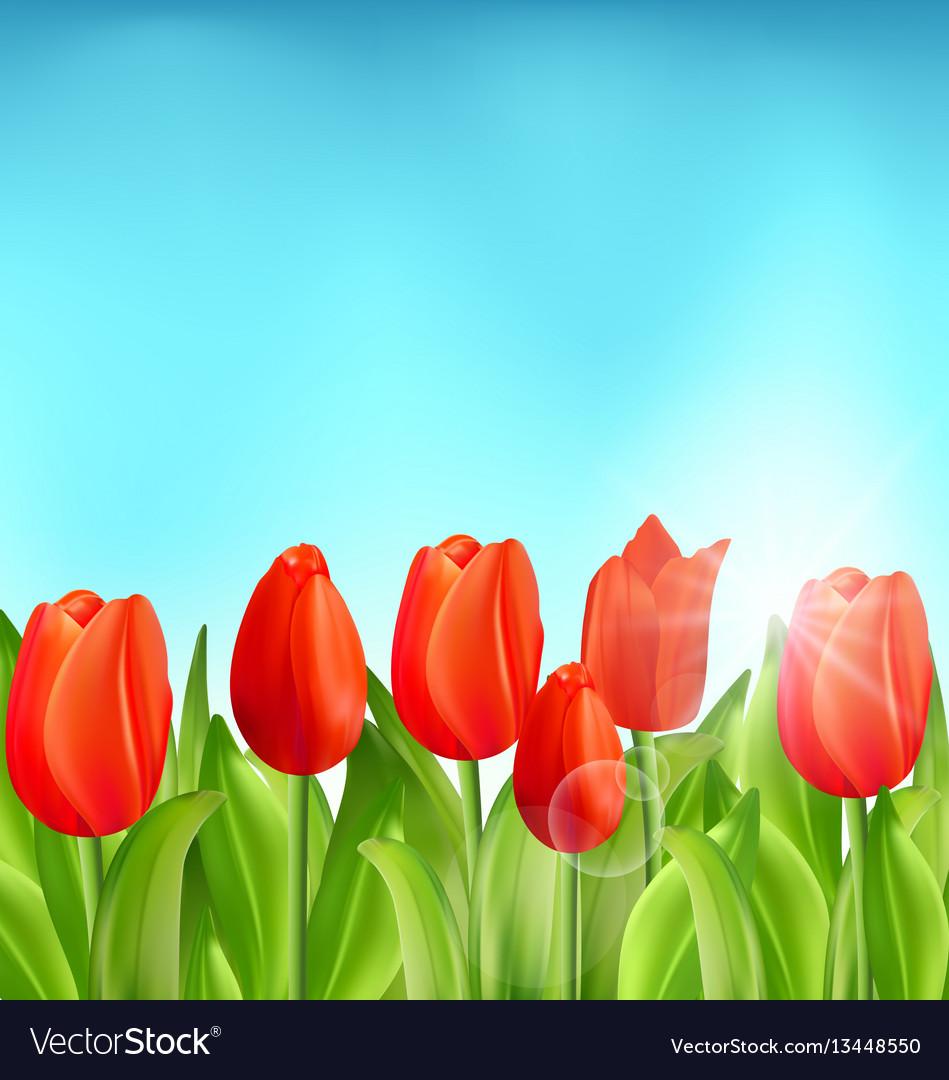 شكرا لكل من يحبنا على طبيعتنا تحية عطرة تعانق ارواحكم الطيبة ... | 1080x949