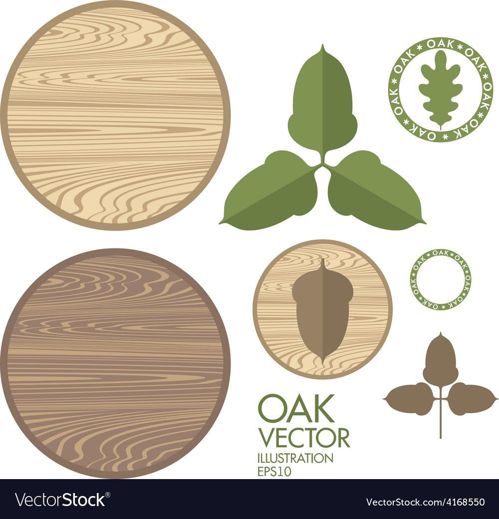 Oak Acorn Wood