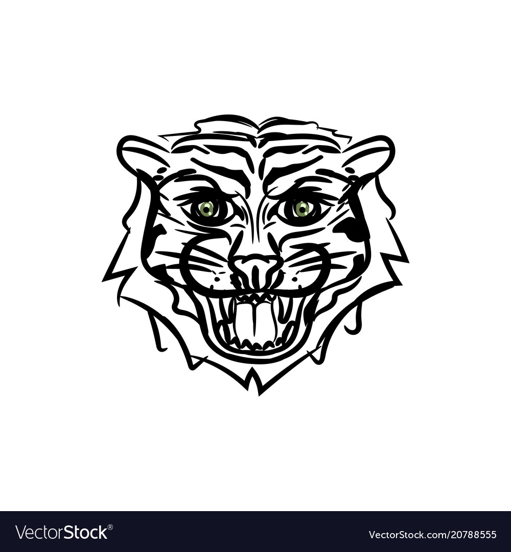 Hand drawn tiger head sketch