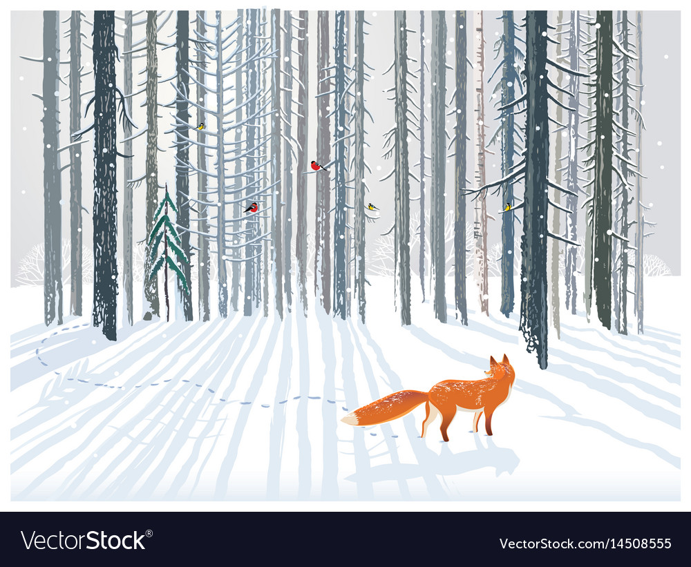 Winter forest landscape with a fox vector image
