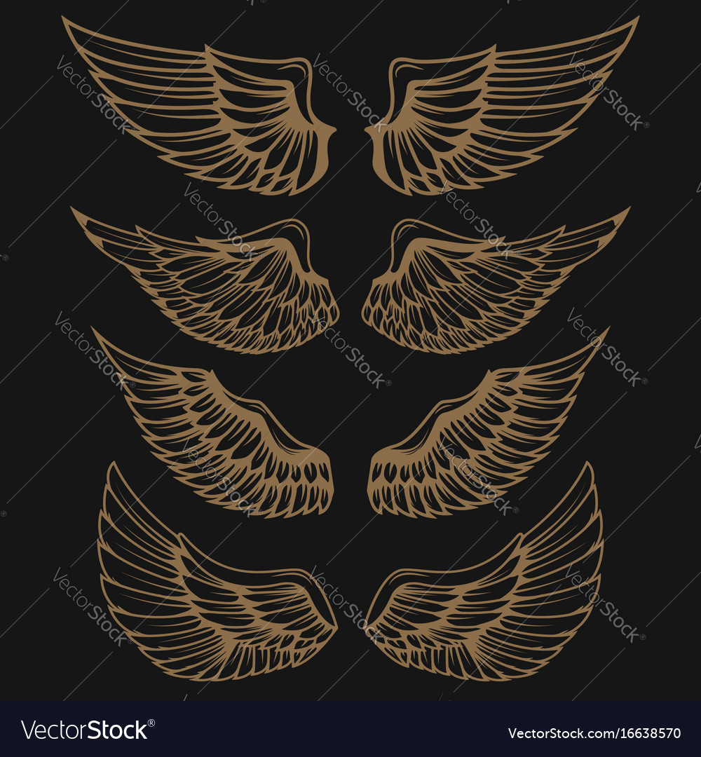 Set of golden wings on dark background