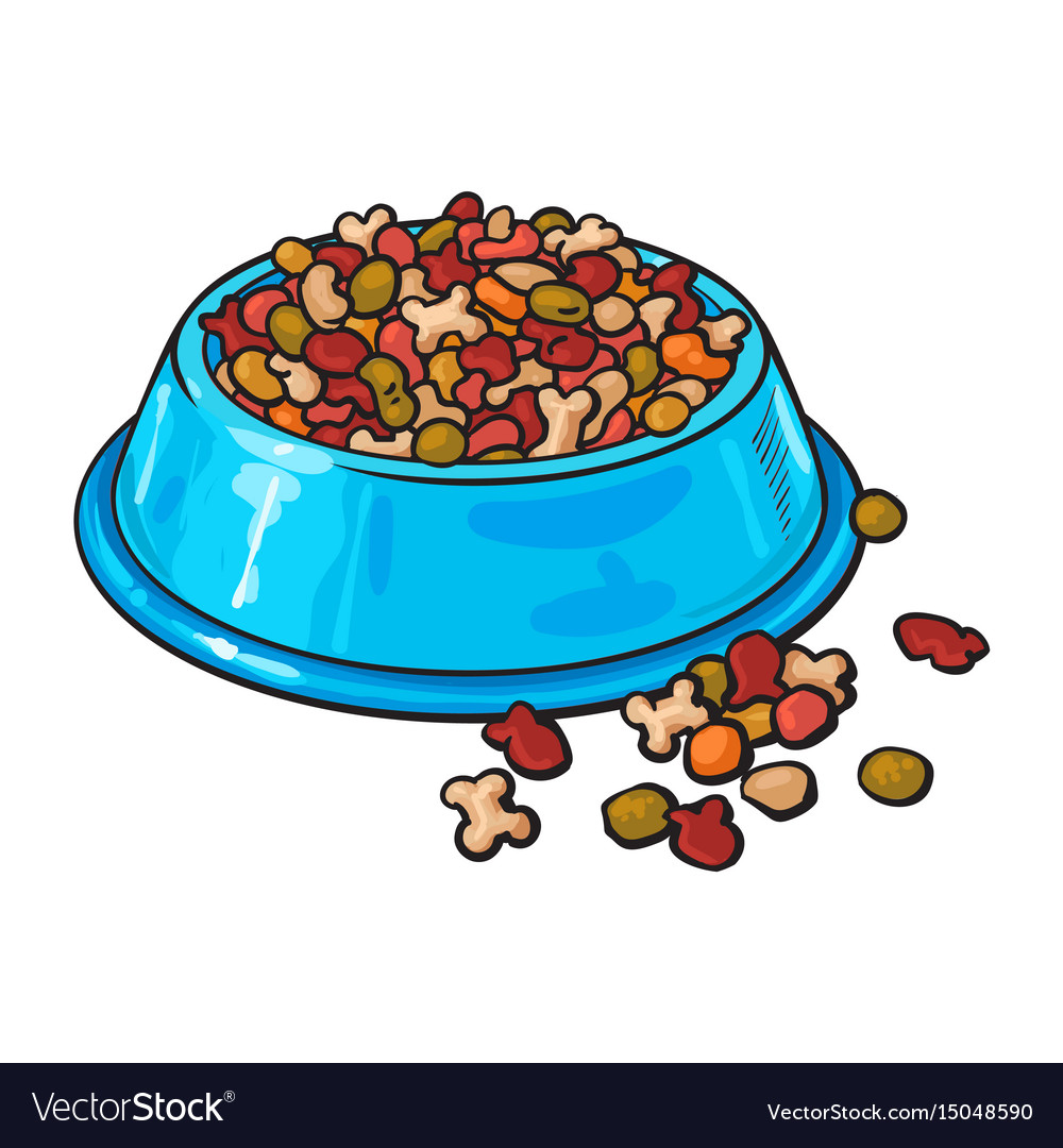 Plastic bowl filled with dry pelleted pet cat