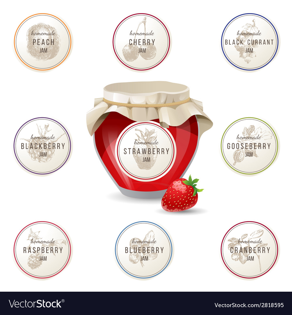 Jem jar and label designs for it vector image