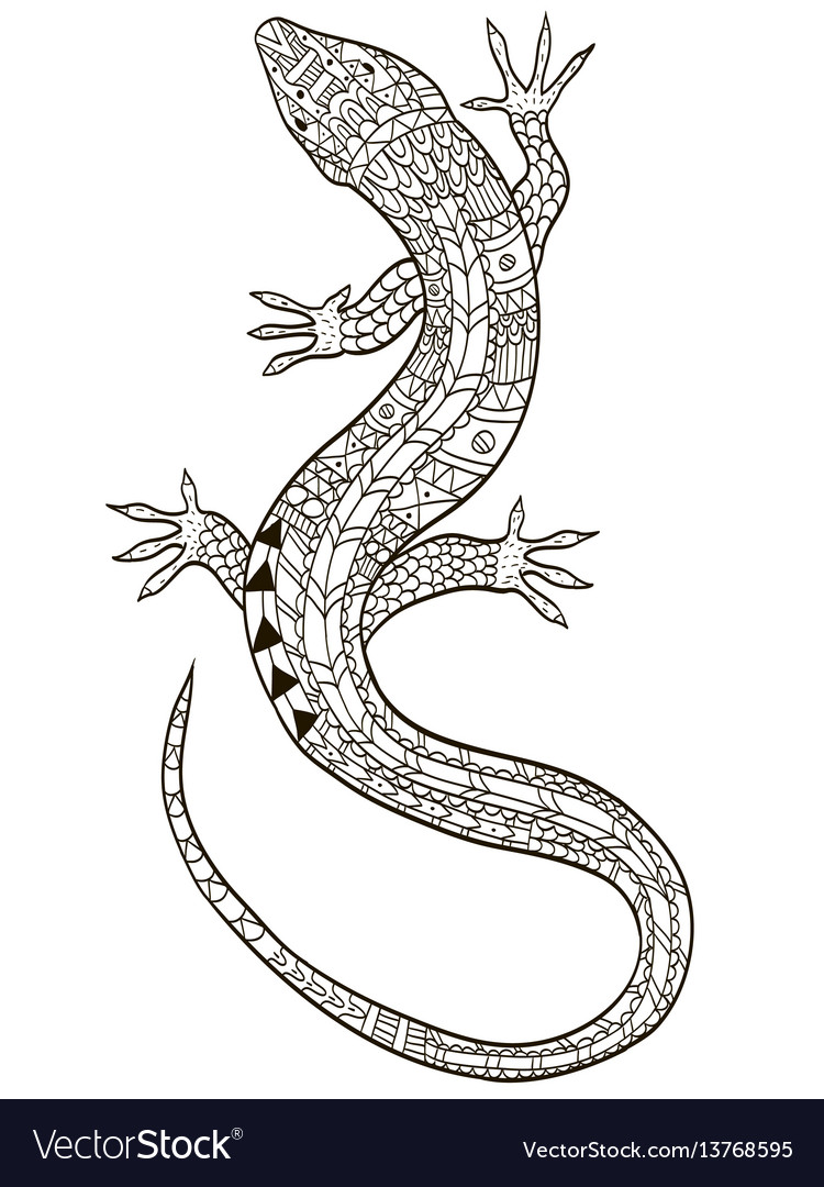 lizard coloring for adults vector