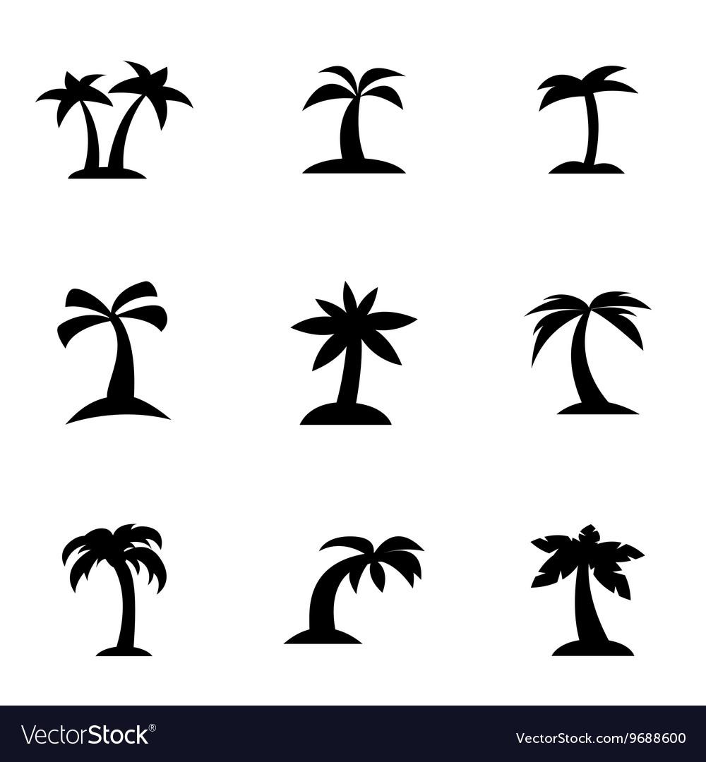 Black palm icon set vector image