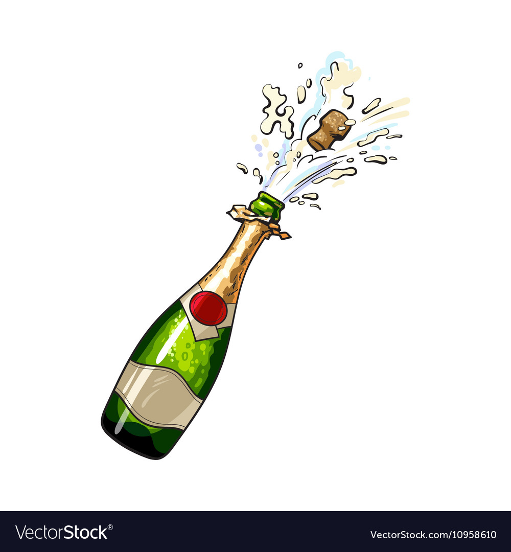 Image result for champagne bottle