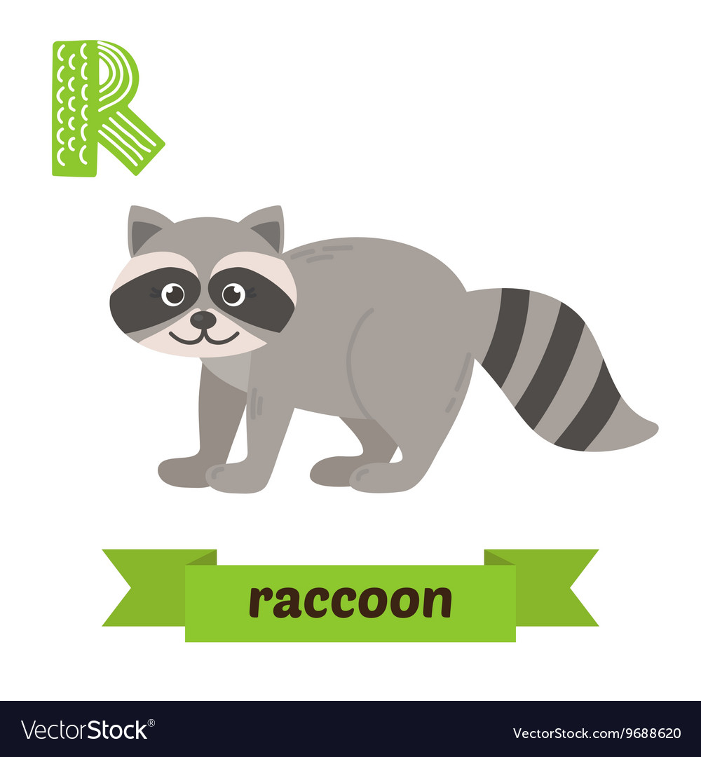 Raccoon R letter Cute children animal alphabet in